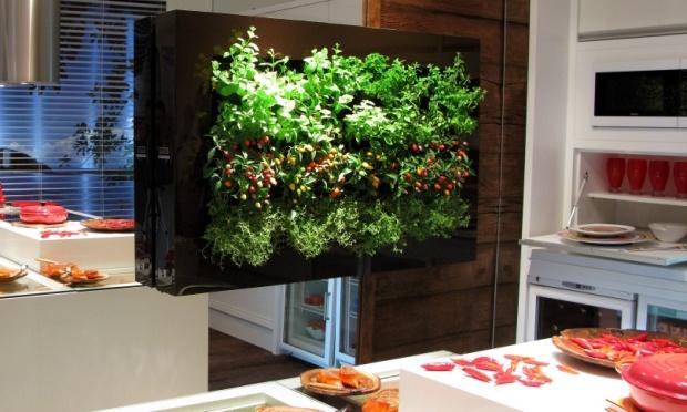 horta e jardim livro : horta e jardim livro:Como Fazer um Jardim Vertical em Sua Casa ou Apartamento – Blog SJ