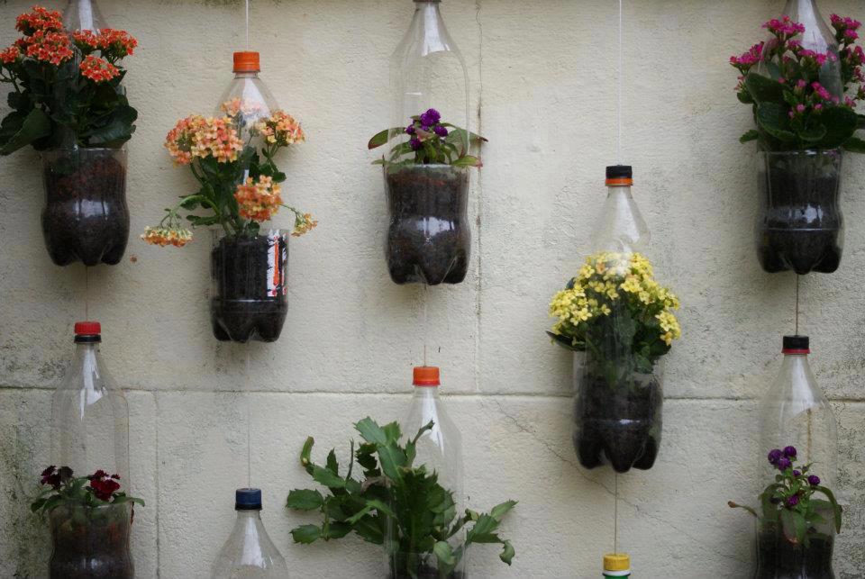 Como Fazer um Jardim Vertical em Sua Casa ou Apartamento  Lá na